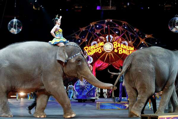 FILE - In this March 19, 2015, file photo, elephants walk during a performance of the Ringling Bros. and Barnum & Bailey Circus, in Washington. Ringling Bros. is scheduled to hold its final elephant show during a performance Sunday night, May 1, 2016, in Providence, R.I.