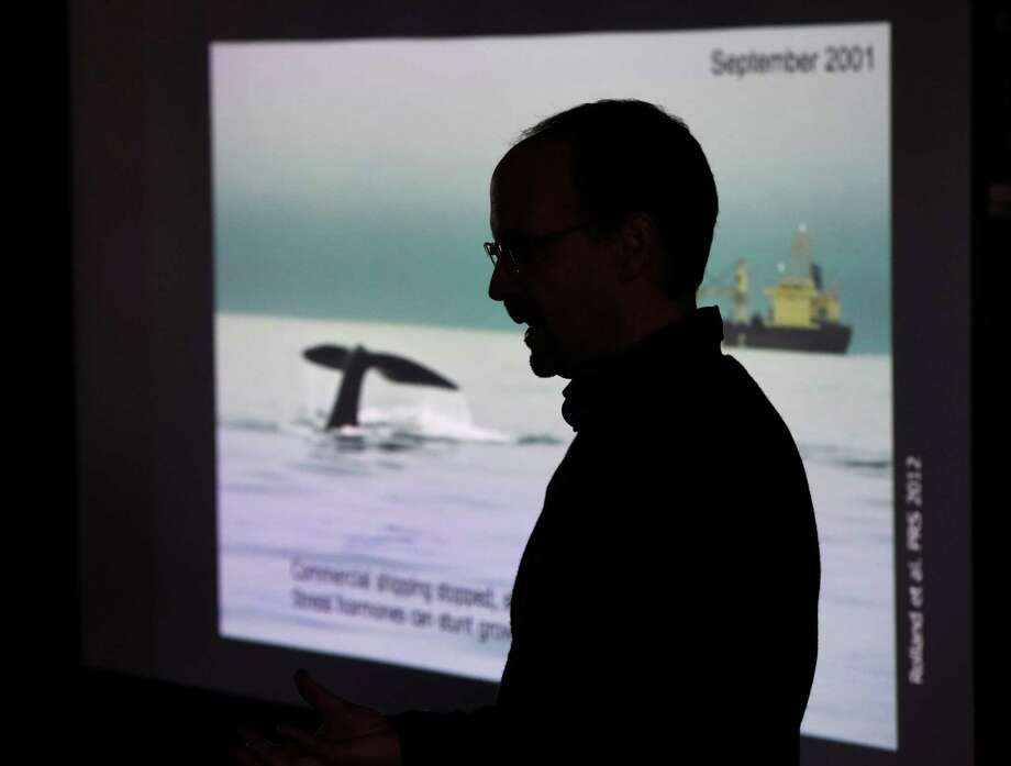 "University of Vermont Research Associate Professor and whale expert Joe Roman gives a presentation ""Raising Whales: How the Recovery of Cetaceans Can Help Restore the Oceans"" during the First Science Sunday Series at Greenwich Point Park's Seaside Center in Old Greenwich, Conn. Sunday, May 1, 2016. In addition to the lecture, there was a live-animal marine tank and childrens activities like whale arts and crafts and a whale matching game. Photo: Tyler Sizemore / Hearst Connecticut Media / Greenwich Time"