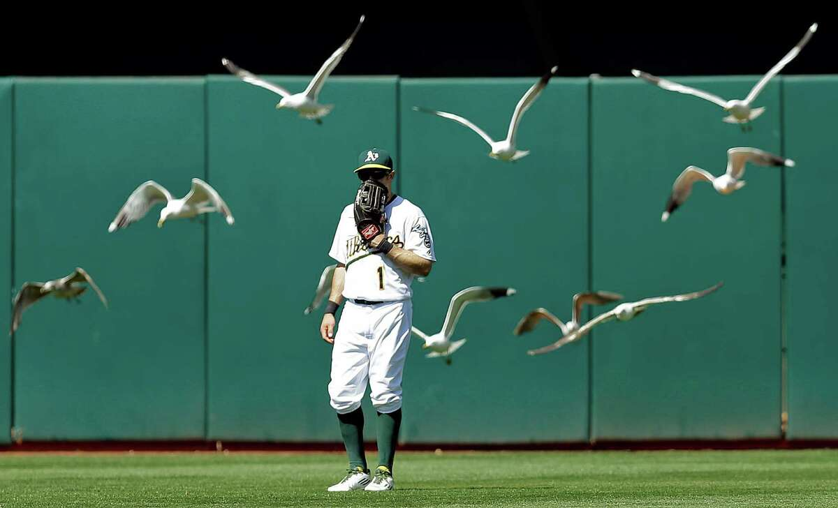 A flock of birds fly over Oakland Athletics outfielder Billy Burns in the eighth inning of a baseball game against the Houston Astros Sunday, May 1, 2016, in Oakland, Calif. (AP Photo/Ben Margot)