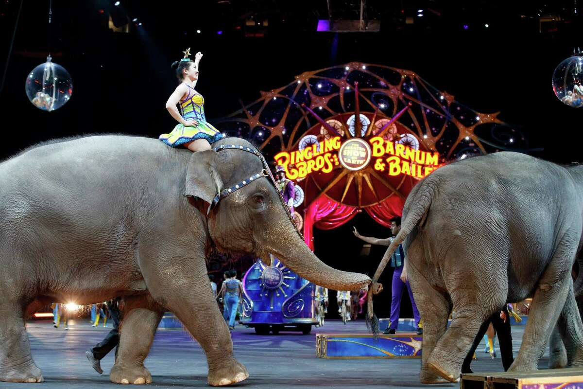 FILE - In this March 19, 2015, file photo, elephants walk during a performance of the Ringling Bros. and Barnum & Bailey Circus, in Washington. Ringling Bros. is scheduled to hold its final elephant show during a performance Sunday night, May 1, 2016, in Providence, R.I. (AP Photo/Alex Brandon, File) ORG XMIT: BX401