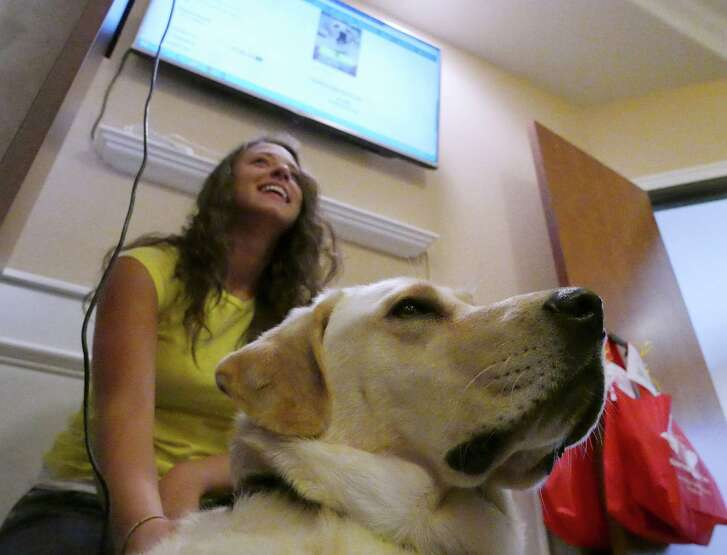 The 24-hour charity-giving marathon known as Big Give SA starts at midnight Tuesday, and now in its third year is aiming to raise $6 million. Last year, Jenna Krysinski, of Guide Dogs of Texas, was with Dylan, a guide dog in advanced training, at the organization's San Antonio facility while viewing a display of donations to the group.