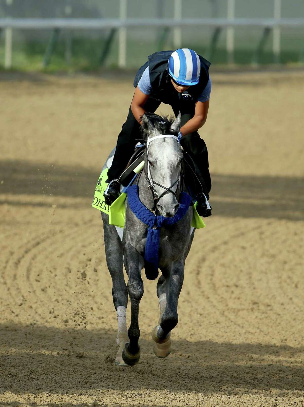 LOUISVILLE, KY - MAY 02: Mohaymen runs on the track during the morning training for the 2016 Kentucky Derby at Churchill Downs on May 02, 2016 in Louisville, Kentucky. (Photo by Andy Lyons/Getty Images) ORG XMIT: 618622905