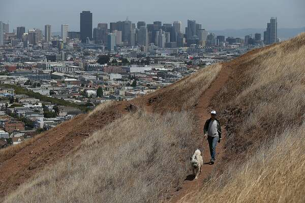 SAN FRANCISCO, CA - JULY 16:  A woman walks her dog walker on a dried section of Bernal Heights Park on July 16, 2014 in San Francisco, California. As the severe drought in California contiues to worsen, the State's landscape and many resident's lawns are turning brown due to lack of rain and the discontinuation of watering.  (Photo by Justin Sullivan/Getty Images)