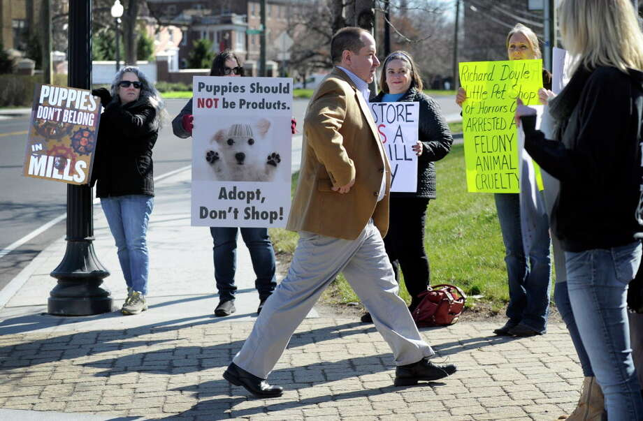 Richard Doyle, the former pet shop owner accused of animal cruelty, walks through a line of protesters on his way to a court appearance at Superior Court in Danbury, Wednesday, April 13, 2016. Photo: Carol Kaliff / File Photo / The News-Times