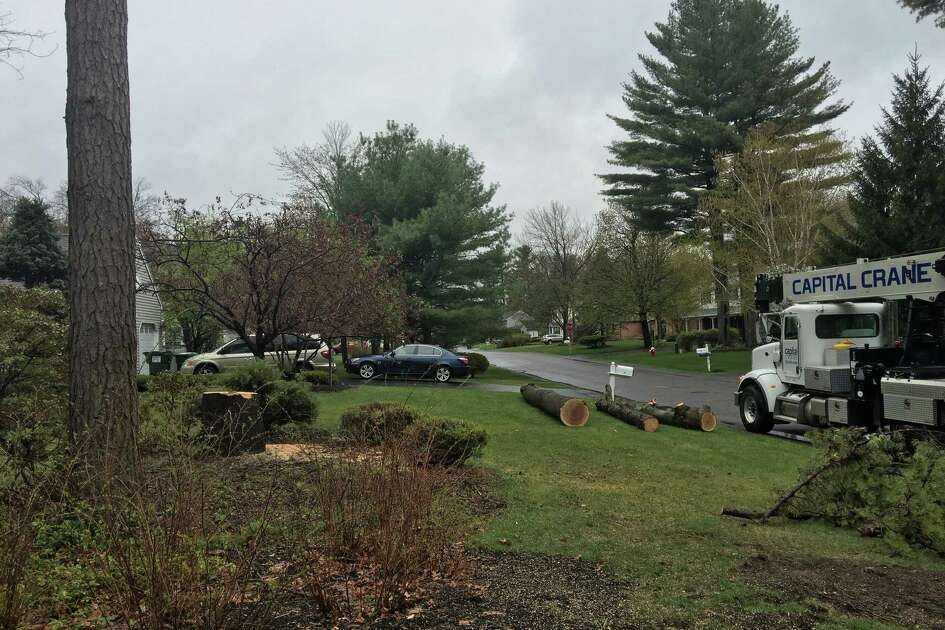 A 23-year old tree worker was killed on May 4, 2016 at 215 Placid Drive in Guilderland. (Lindsay Elllis/Times Union)