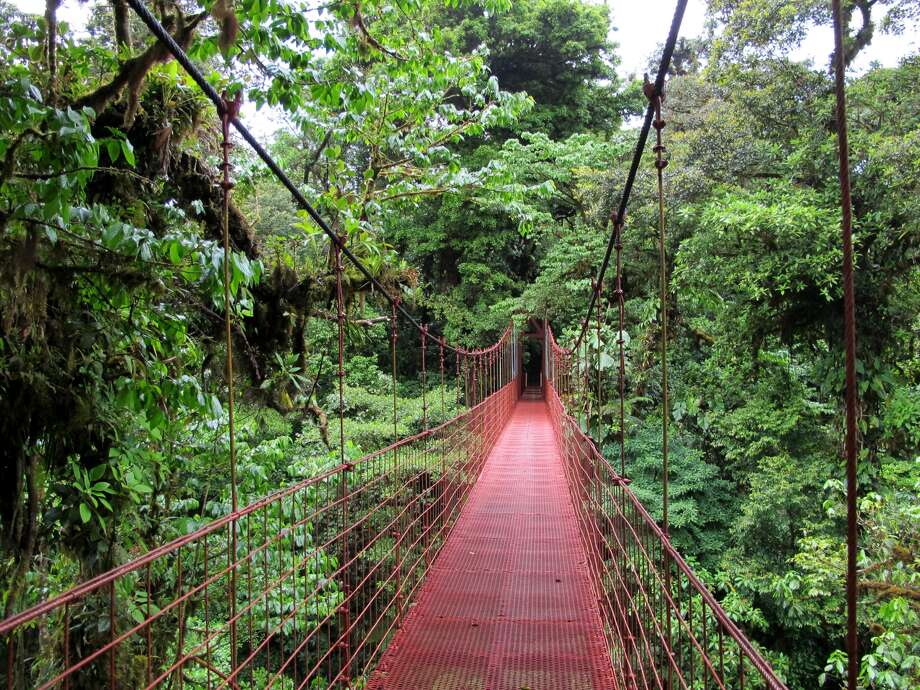 A bridge swings in the Costa Rican cloud forest where author Andrew Kragie spent much of his gap year. (Haakon Crohn, CC-BY SA 3.0)