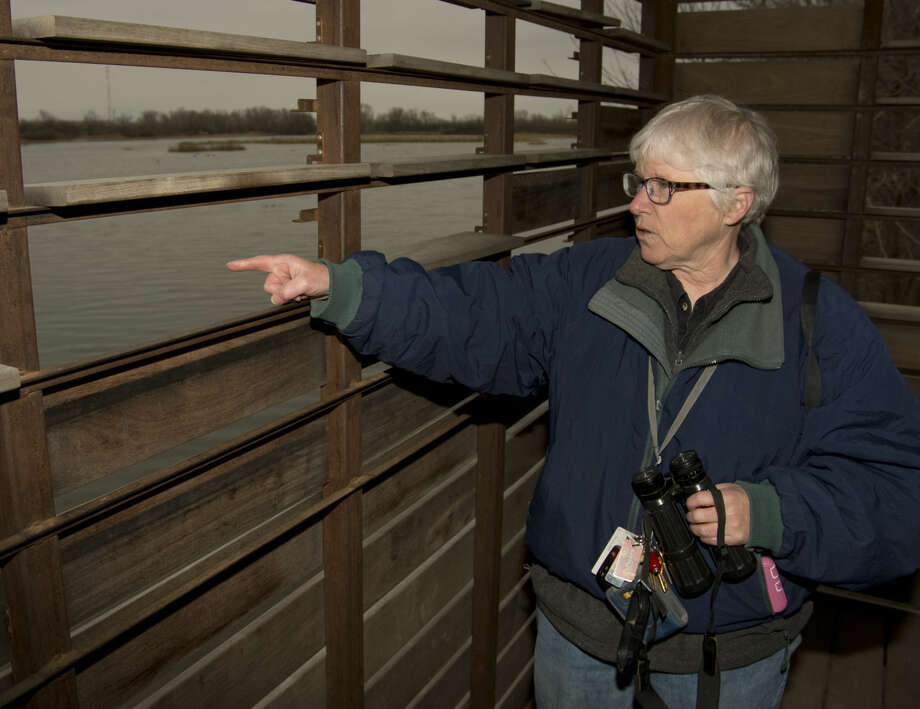 Heidi Hughes, new executive director of the I-20 Wildlife Preserve looks out of one of the bird blinds Tuesday 01-05-15 at some of the water fowl on the playa. Tim Fischer\Reporter-Telegram Photo: Tim Fischer