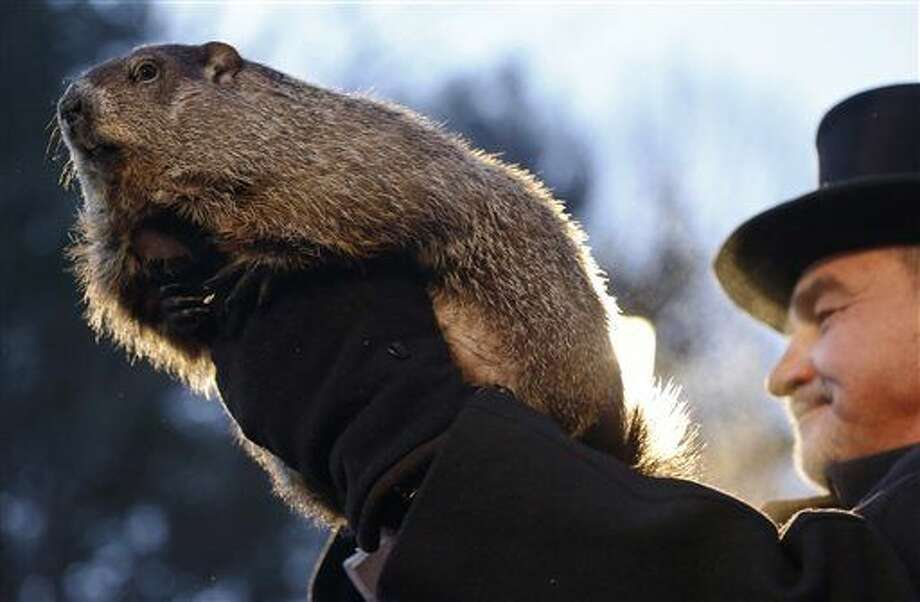 "Groundhog Club co-handler John Griffiths holds Punxsutawney Phil during the annual celebration of Groundhog Day on Gobbler's Knob in Punxsutawney, Pa., Tuesday, Feb. 2, 2016. The handlers say the furry rodent has failed to see his shadow, meaning he's ""predicted"" an early spring. (AP Photo/Keith Srakocic) Photo: Keith Srakocic"