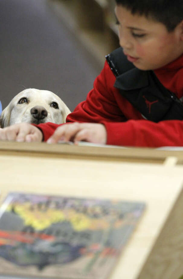 Rizzo the therapy dog assists children with reading difficulties on Tuesday at the Midland County Public Library downtown. James Durbin/Reporter-Telegram Photo: JAMES DURBIN
