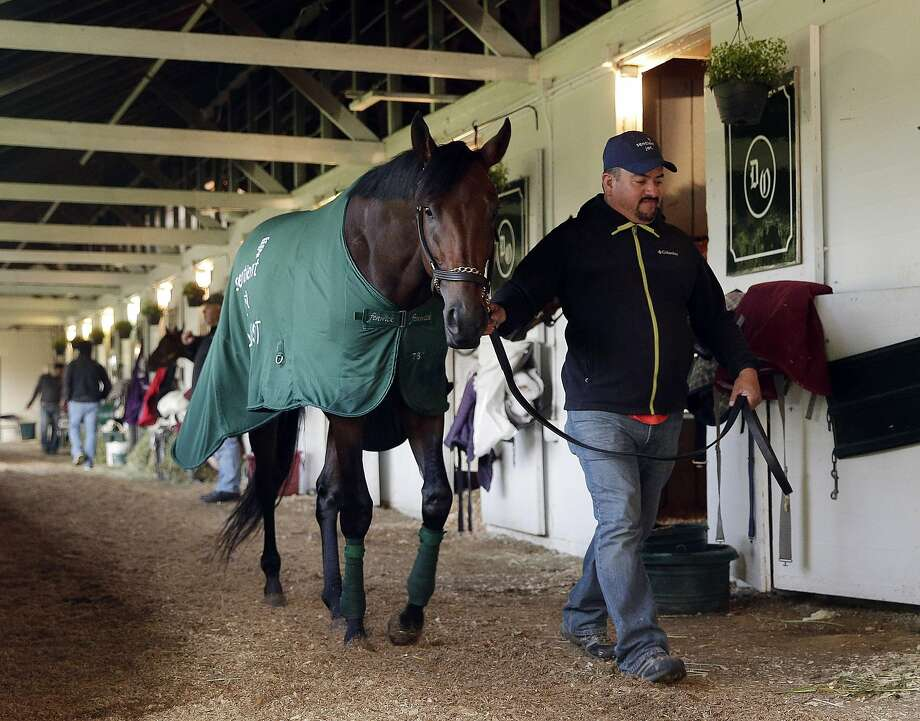 Undefeated Nyquist is favored to continue the recent great efforts turned in by California horses at the Kentucky Derby. Photo: Charlie Riedel, Associated Press