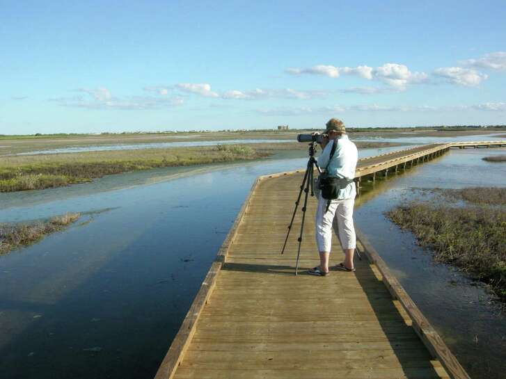 Birders can't get enough of Port Aransas' myriad designated bird spotting areas, which include everything from gazebos to jetties to raised platforms and pathways.
