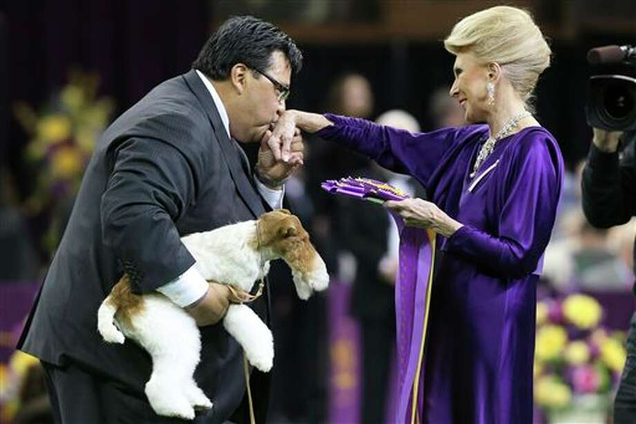 Sky, a wire fox terrier, is held as his handler Gabriel Rangel kisses the hand of judge Betty Regina Leininger after winning best of show during the Westminster Kennel Club dog show, Tuesday, Feb. 11, 2014, in New York. (AP Photo/John Minchillo) Photo: John Minchillo / FR170537 AP