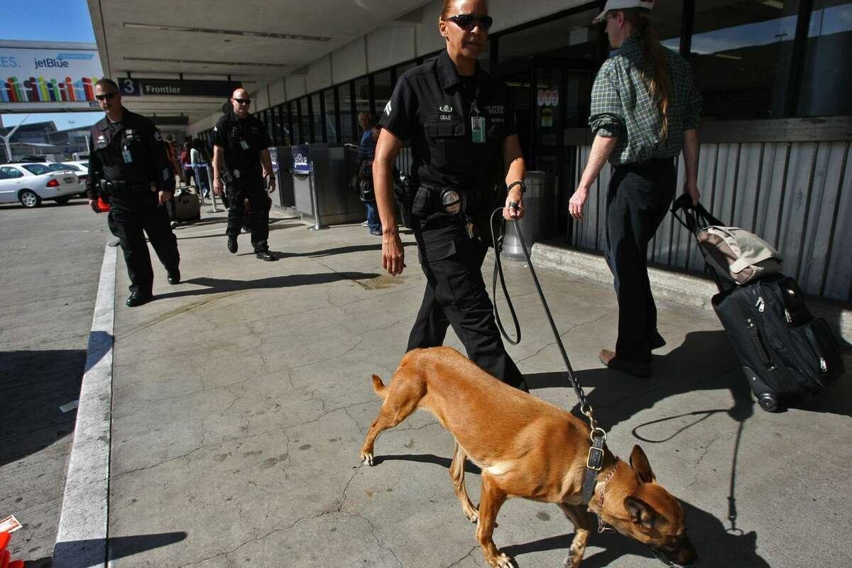 A police officer is pictured with a dog in this 2013 file photo.