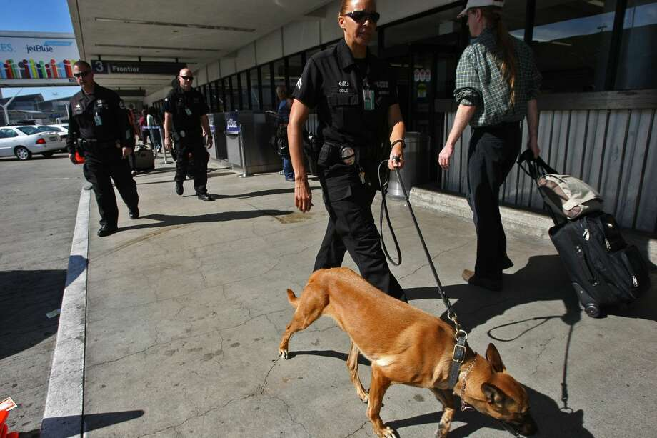 A police officer is pictured with a dog in this 2013 file photo.  Photo: Genaro Molina