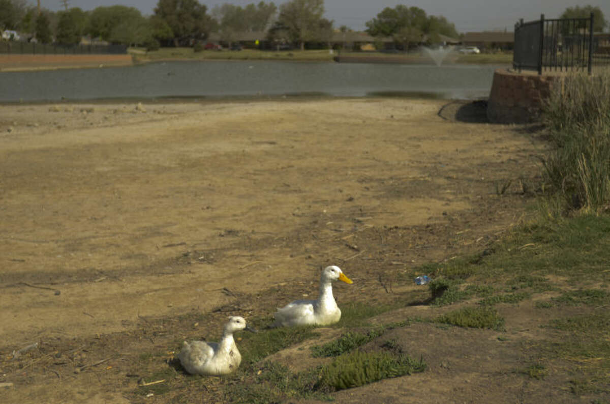 The pond at Wadley Barron Park is dry in this file photo