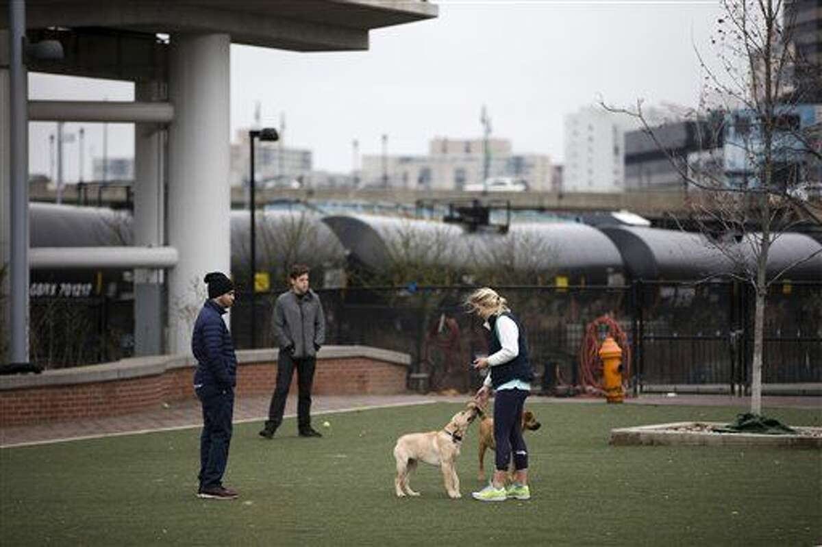In this photo taken April 9, 2015, people play with their dogs in view of train tank cars with placards indicating petroleum crude oil standing idle on the tracks, in Philadelphia. Rail tank cars that are used to transport most crude oil and many other flammable liquids will have to be built to stronger standards to reduce the risk of catastrophic train crash and fire under a series of new rules unveiled Friday by U.S. and Canadian transportation officials. (AP Photo/Matt Rourke)