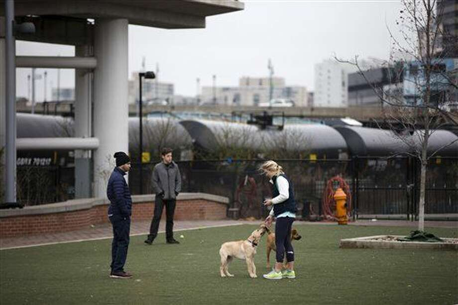 In this photo taken April 9, 2015, people play with their dogs in view of train tank cars with placards indicating petroleum crude oil standing idle on the tracks, in Philadelphia. Rail tank cars that are used to transport most crude oil and many other flammable liquids will have to be built to stronger standards to reduce the risk of catastrophic train crash and fire under a series of new rules unveiled Friday by U.S. and Canadian transportation officials. (AP Photo/Matt Rourke) Photo: Matt Rourke