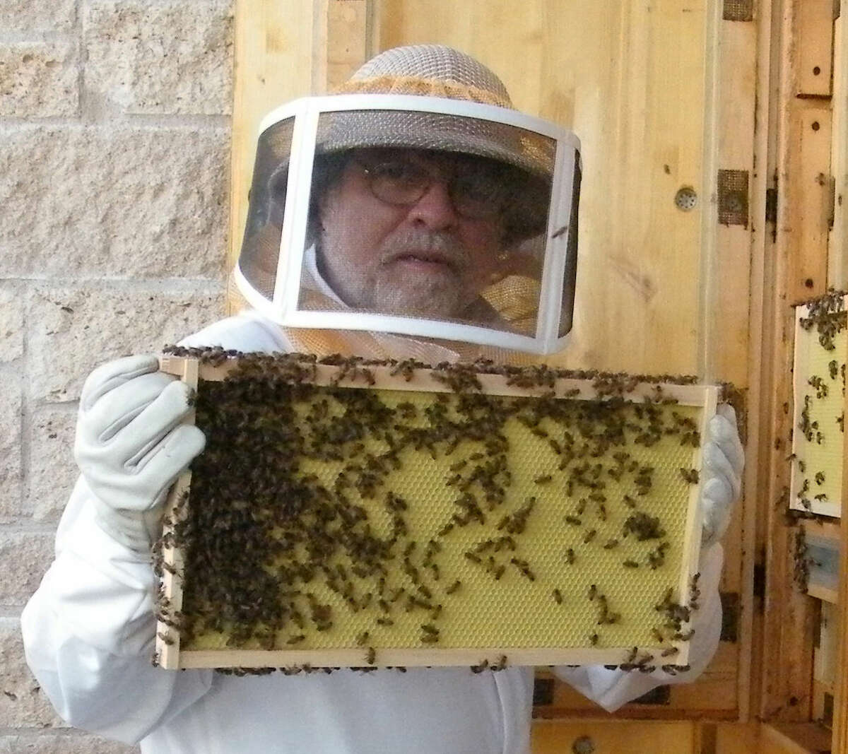 Michael Nickell, with Sibley Learning Center, shows one of the trays of bees.