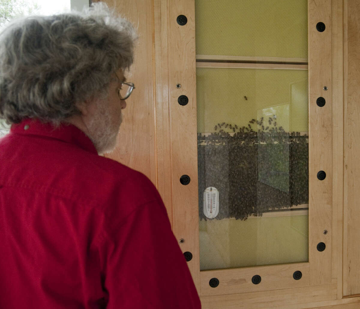 Michael Nickell, with Sibley Nature Center, shows the verticle viewing hive Thursday, 5-21-15, at the nature center. Tim Fischer\Reporter-Telegram