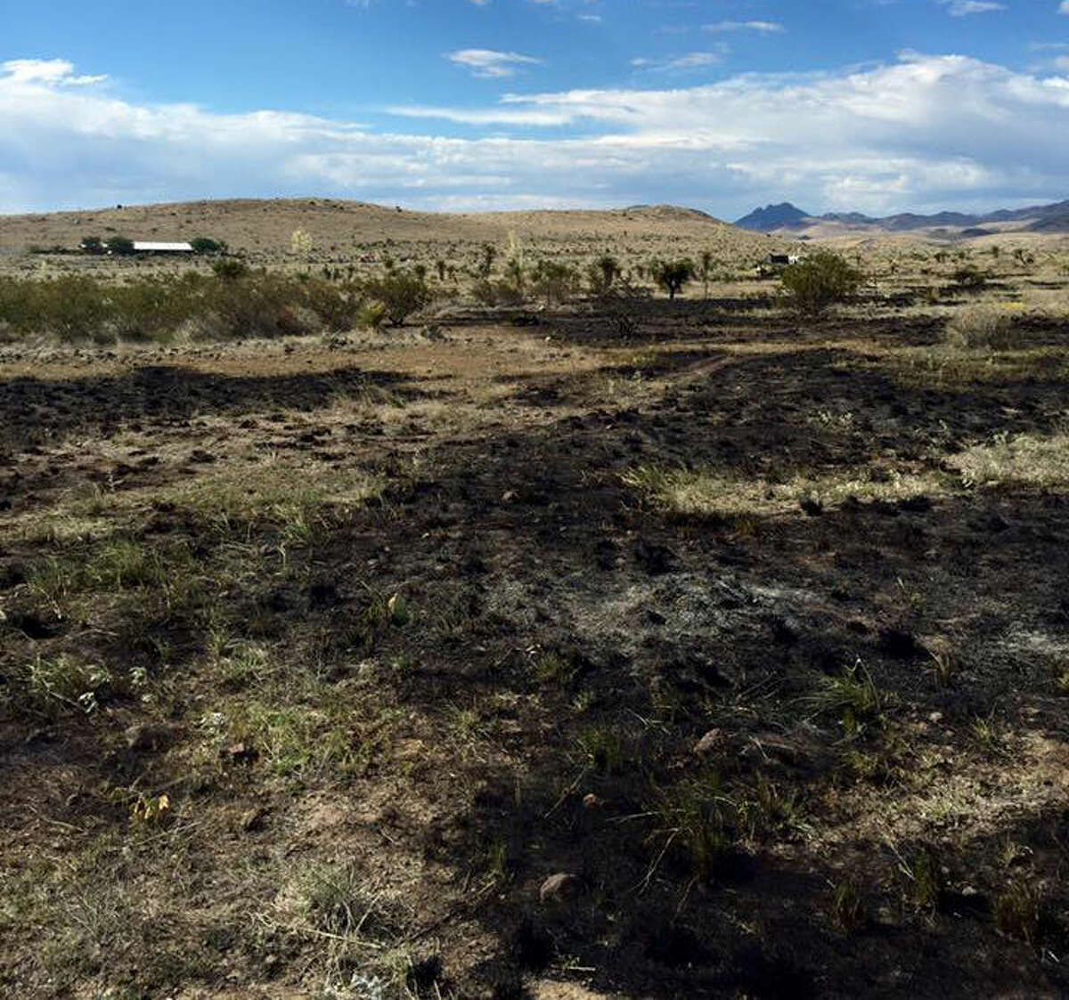 The aftermath of a grass fire in Jeff Davis County. Photo courtesy of Jeff Davis County Fire Marshal Roy Hurley.