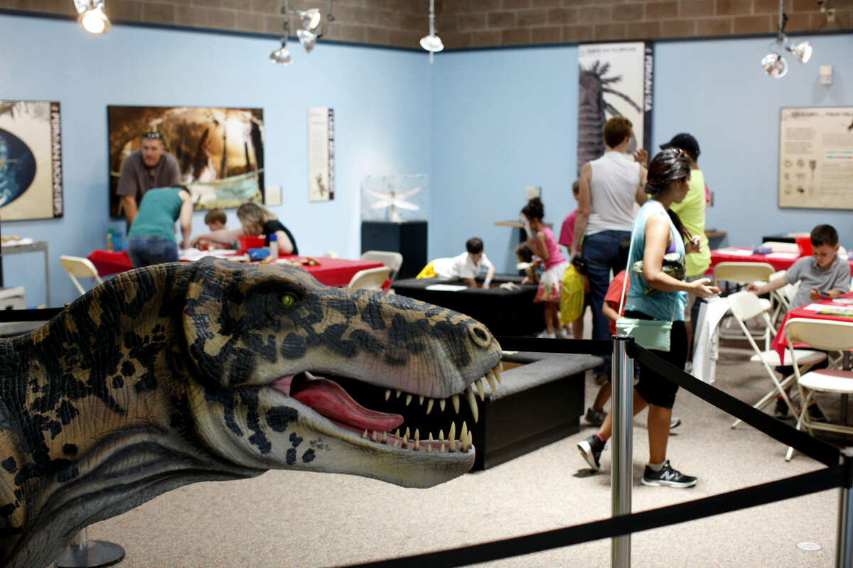 Permian Monsters exhibit in the Museum of the Southwest on Saturday, July 11, 2015. James Durbin/Reporter-Telegram