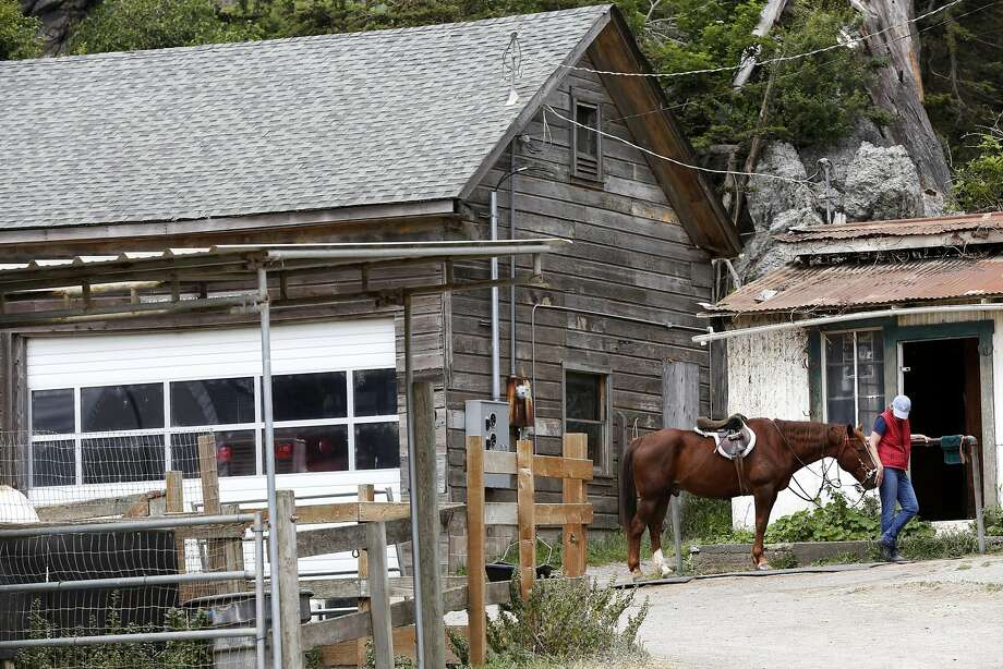 Leida Schoggen, board president of Ocean Riders of Marin, pets a horse at 100-year-old Golden Gate Dairy stables in Muir Beach, the starting point for a ride. Photo: Connor Radnovich, The Chronicle