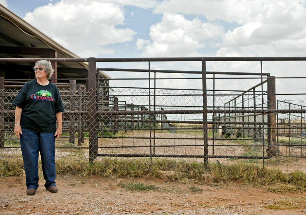 Mary Lou Hartman stands on her property in east Midland on Tuesday while recounting to the MRT her experience with wild dogs that killed her pet goats. James Durbin/Reporter-Telegram