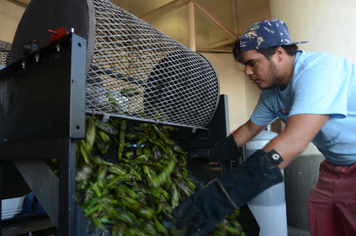 HEB employee Andrew Pando roasts hatch chiles outside the store Saturday. James Durbin/Reporter-Telegram