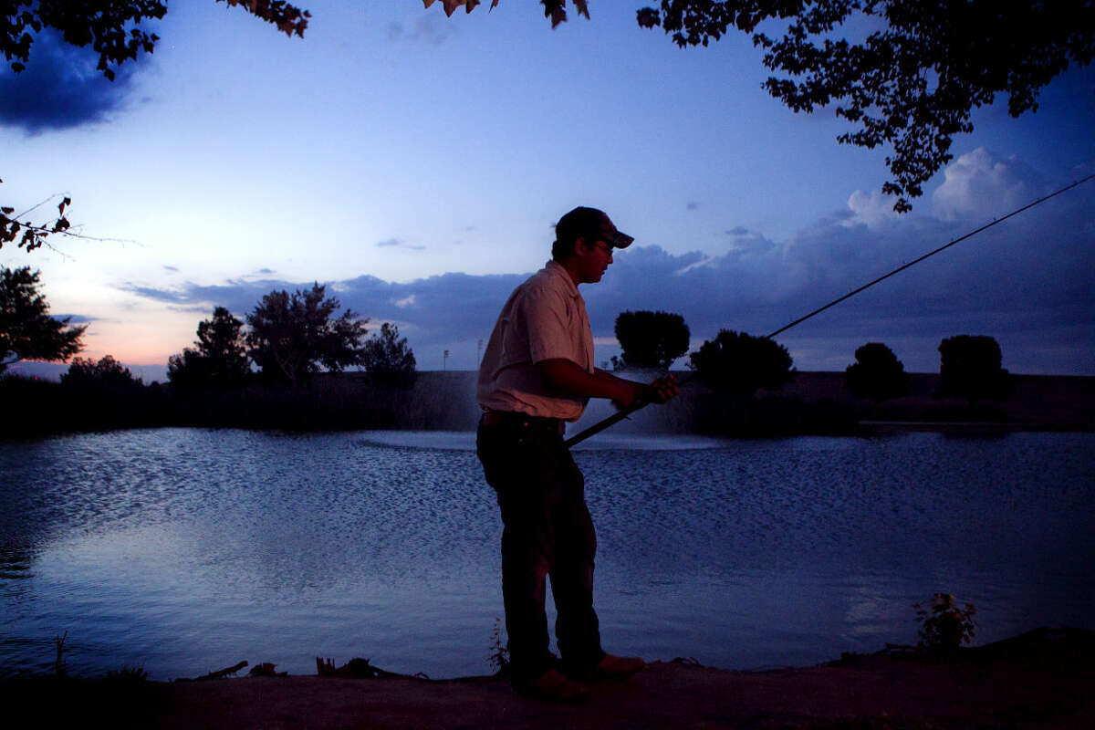 """Kristian Rodriguez pulls crawfish out of the lake at Beal Park on Wednesday night. """"They've been in here for a few years,"""" said Rodriguez, """"I use them for catfish bait."""" James Durbin/Reporter-Telegram"""