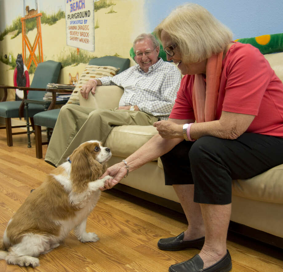 Gary and Carol Hall, with their dog Marley, a Cavalier King Charles Spaniel, and therapy dog. Friday 10-16-2015 Tim Fischer\Reporter-Telegram Photo: Tim Fischer