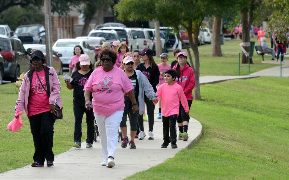 Pink the Park event on Saturday in Grafa Park. James Durbin/Reporter-Telegram Photo: James Durbin