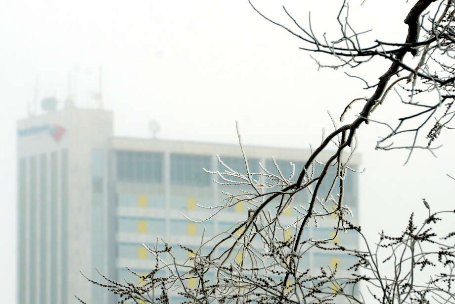 A frozen branch near W. Industrial Ave. with downtown Midland in the background, photographed Saturday, Feb. 28, 2015. James Durbin/Reporter-Telegram Photo: James Durbin
