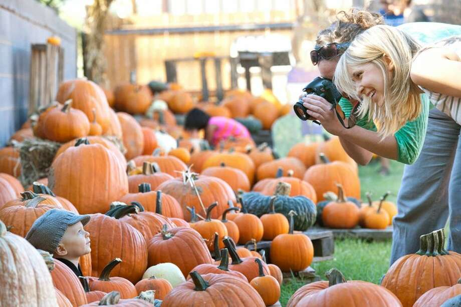 Jennie Adkins tries to get her 8-month-old son Deacon to smile while photographer Jennifer Paige prepares to take the photo Tuesday at the St. Luke United Methodist Church, 2010 Pumpkin Patch. Cindeka Nealy/Reporter-Telegram Photo: Cindeka Nealy