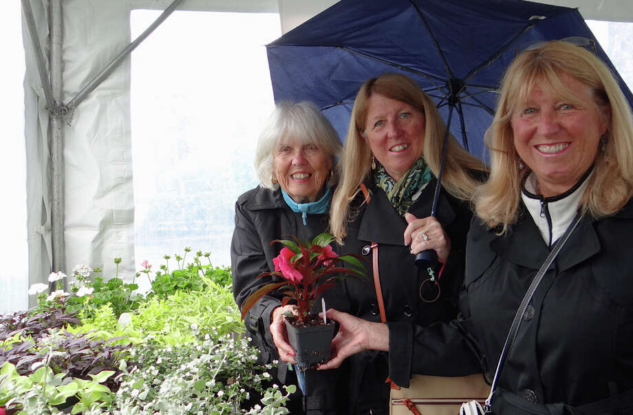 Kathy McCabe of Fairfield, Janet Gibbons of Vermont and Margie Wroblewski of Fairfield take shelter from rain while browsing plants on sale at the Dogwood Festival at the Greenfield Hill Congregational Church. Photo: Fairfield Citizen / Mike Lauterborn / Fairfield Citizen