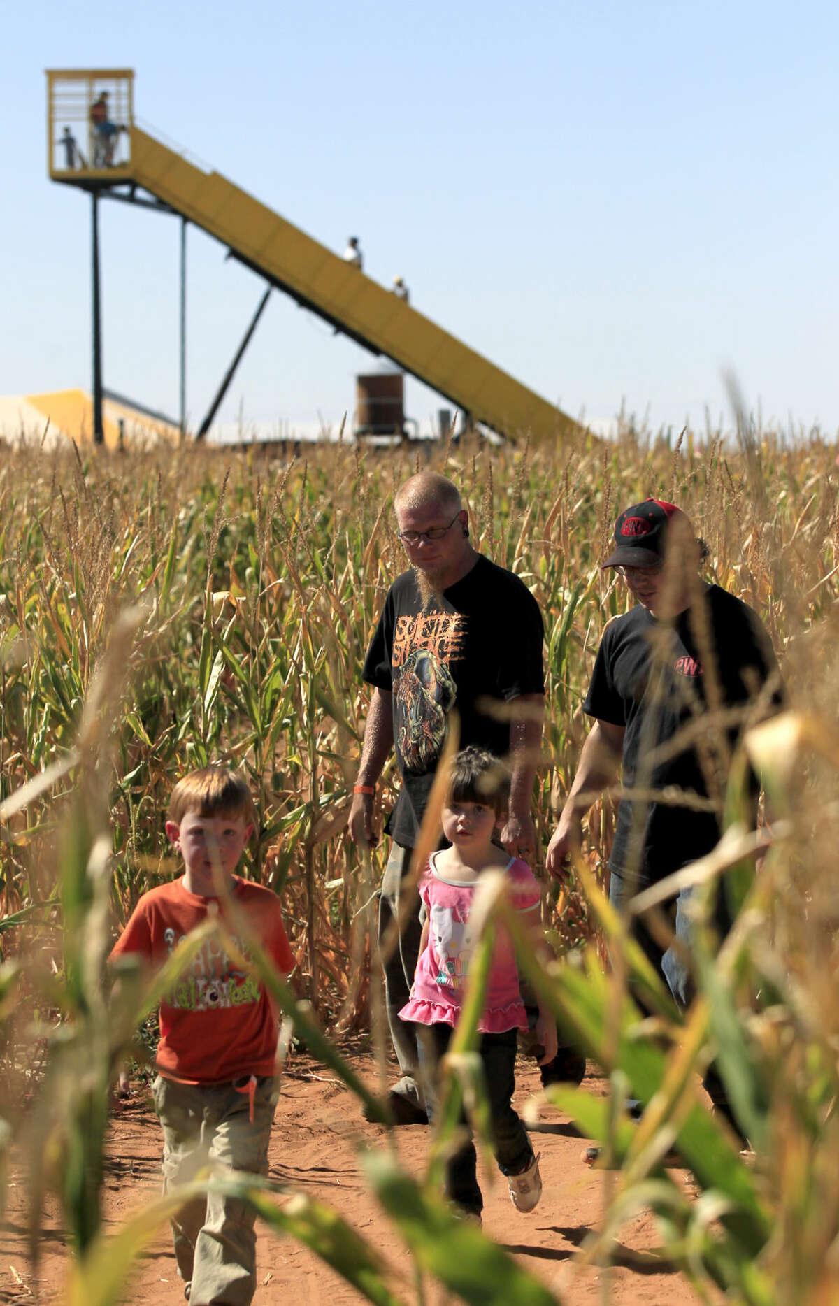 FILE PHOTO: Corn maze at Fiddlesticks Farms