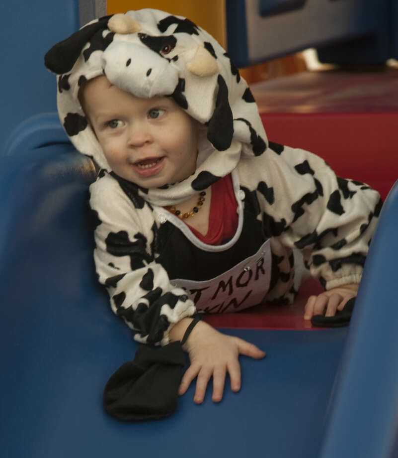 Logan Walker is dressed as the Chick-Fil-A cow. Photo: Tim Fischer