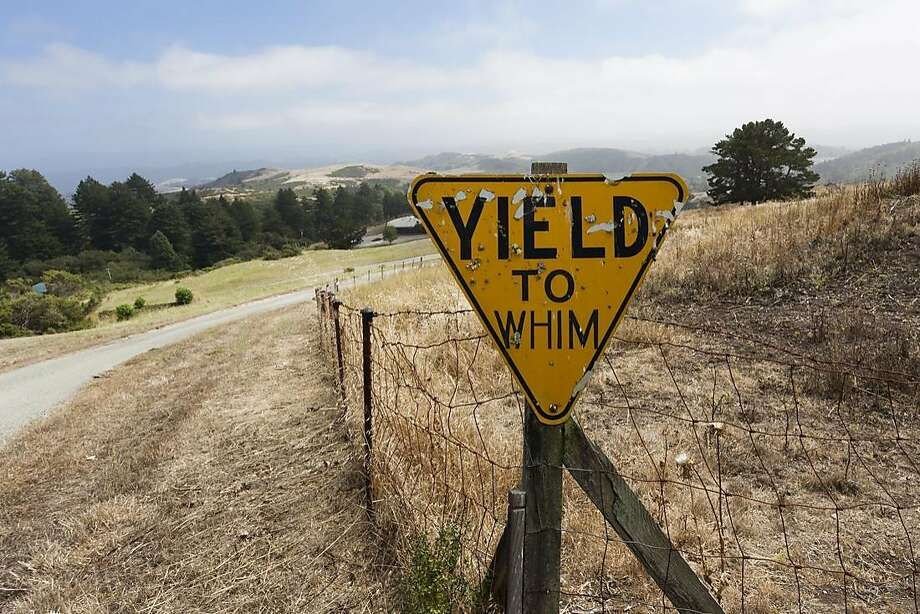 "Frank Foreman's ""Yield to Whim,"" 1983. Photo: Courtesy Djerassi"