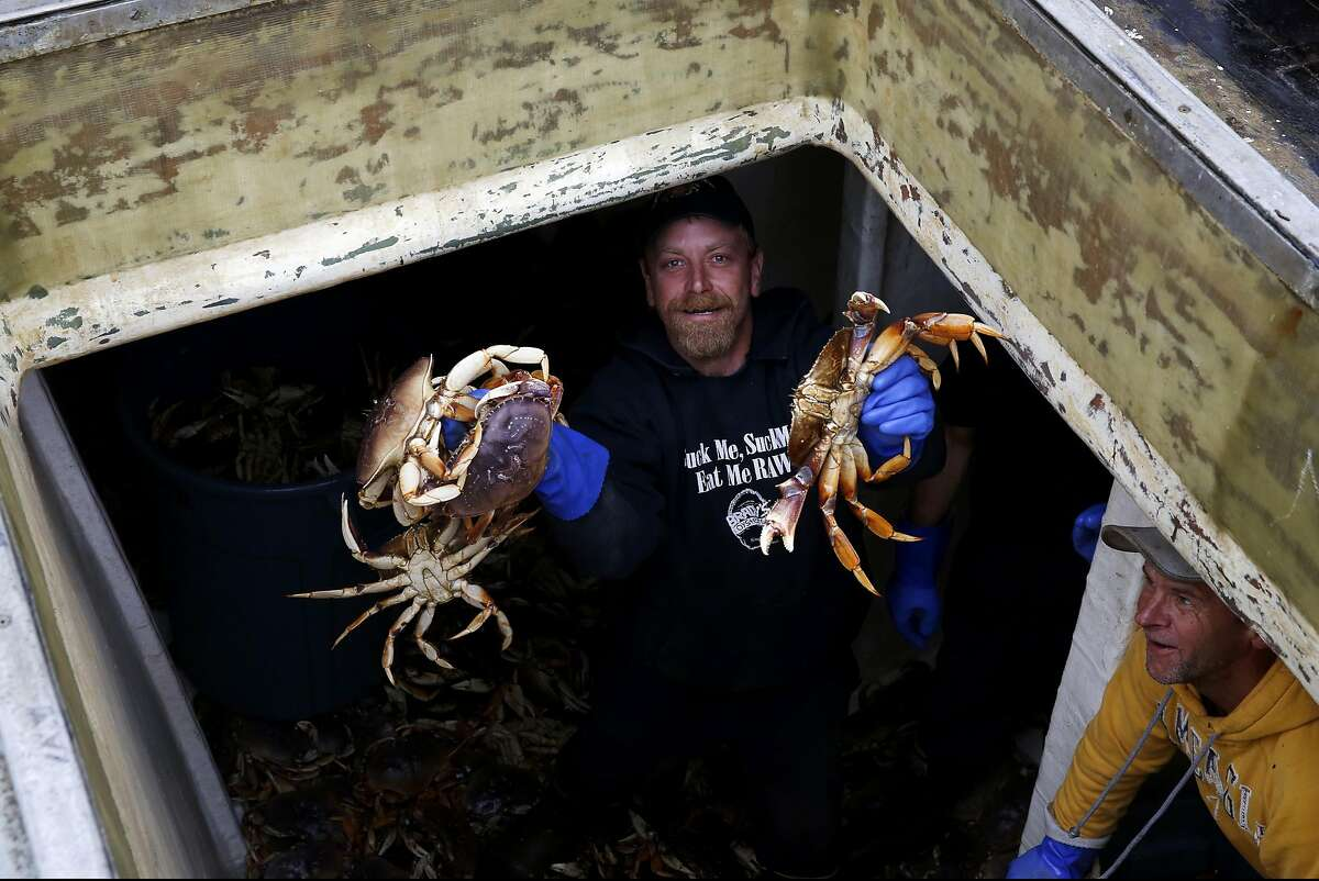 Stuart Blazek holds up four Dungeness crab as he and the rest of the crew unload their catch at Pier 45 in San Francisco, California, on Monday, May 9, 2016.