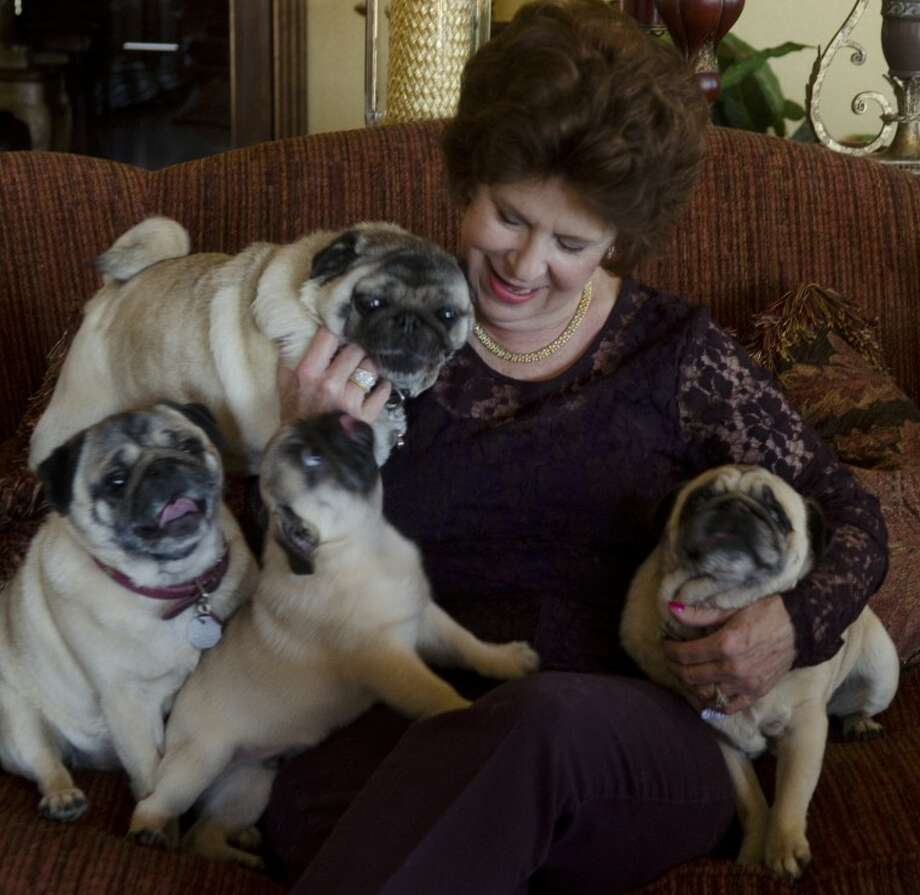 Jane Bale-Woodside and some of her pugs — Buddy, Brooke, Bonnie Sue and a puppy yet to be named. Photo by Tim Fischer/Midland Reporter-Telegram Photo: Tim Fischer