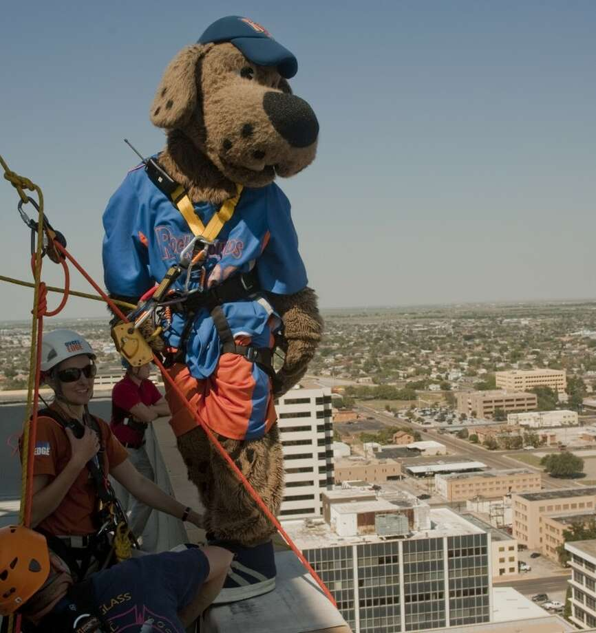 Rocky the Rockhound looks out over the city as he gets ready to rappel down the side of the 22 storey Wilco Building Tuesday as part of the fundraiser Over the Edge for the Boy Scouts. Tim Fischer\Reporter-Telegram Photo: Tim Fischer