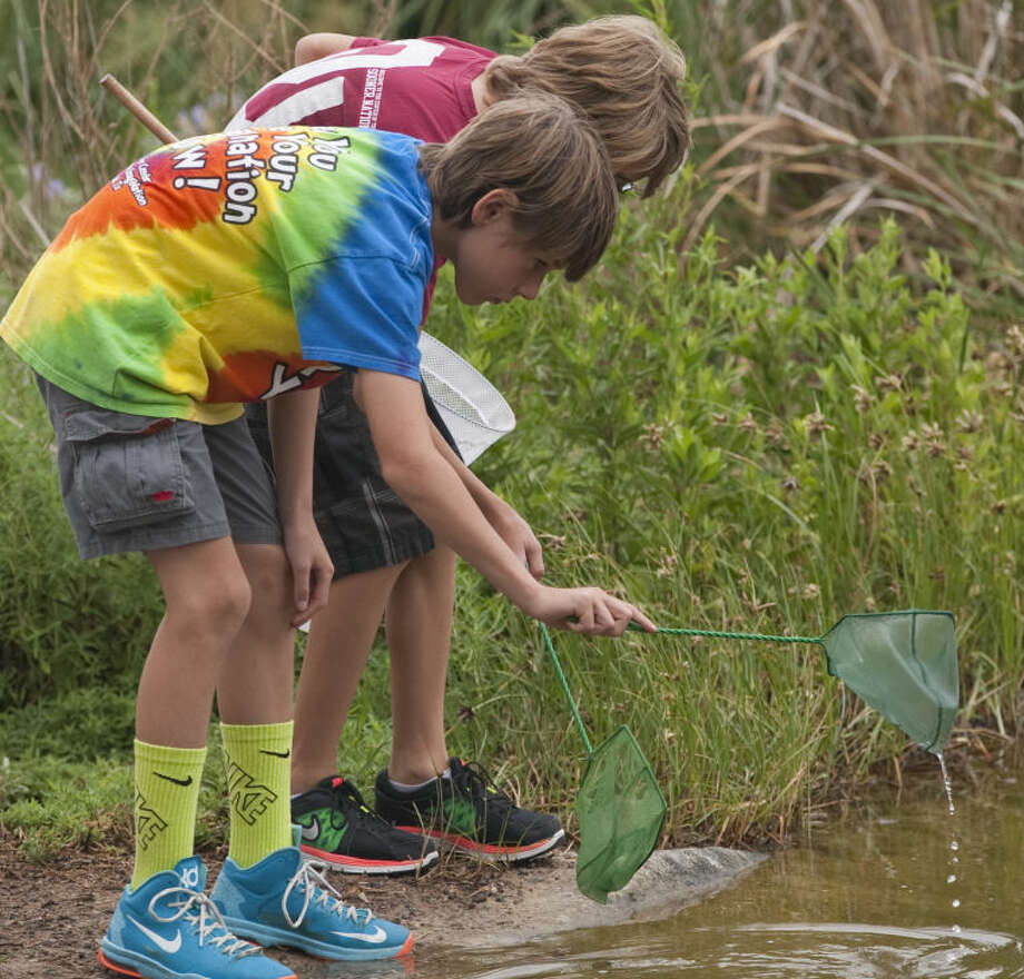 Coleman Wilson and Cole Pool look for water insects Thursday during Bug Camp at Sibley Nature Center. Tim Fischer\Reporter-Telegram Photo: Tim Fischer