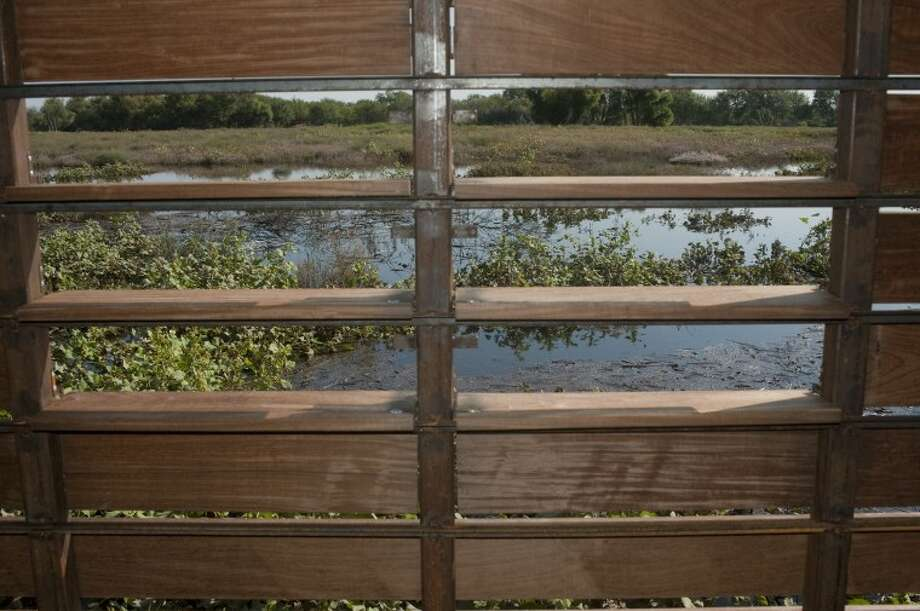 The seven bird blinds have louvered slats that can be indivdually opened to limit exposure of people to the wildlife. Tim Fischer\Reporter-Telegram Photo: Tim Fischer