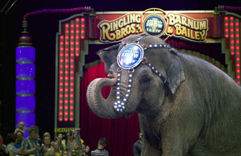 Circusgoers meet Duchess, the 43-year-old Asian elephant during the Ringling Bros. and Barnum & Bailey Circus All-Access Pre Show at Ector County Coliseum. Photo: MARY POWERS