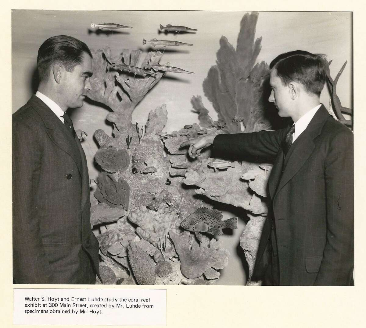 1939 - Hoyt Marine Hall Exhibit at Stamford Museum and Nature Center