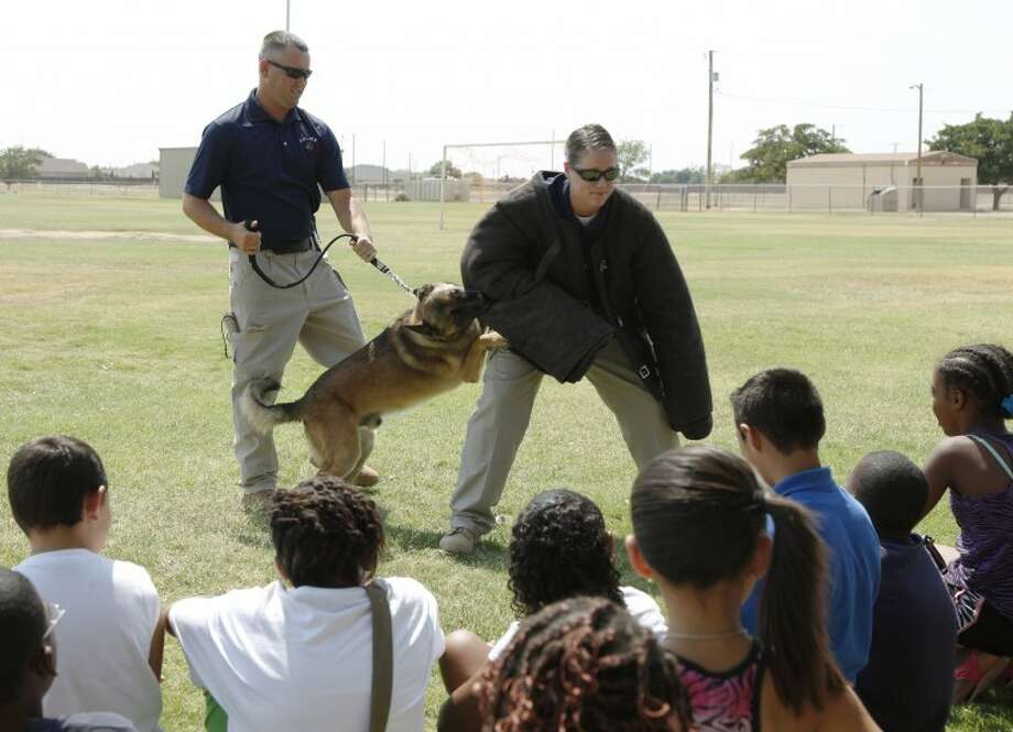 K-9 officers Chad Simpson and Mollie Pehl show kids from the Casa De Amigos camp what their dogs do on the job Wednesday using Pehl as a dummy attacker for Sid the Belgiun Malinios police dog. Chaney Mitchell/Reporter-Telegram Photo: Chaney Mitchell