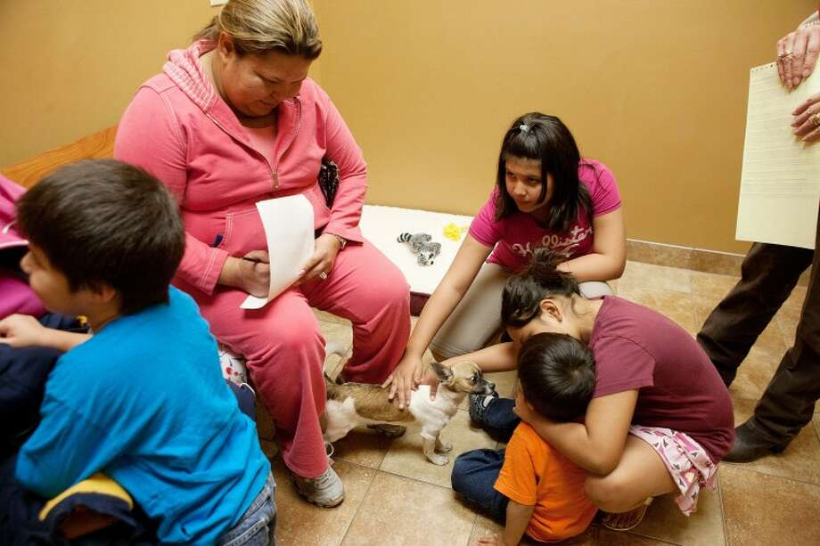 "Mayra Ramirez fills out adoption papers while her children Brianna Castillo, 11, from left, Savannah Castillo, 9, and Daniel Ramirez, 3, play with their new pet Chihuahua ""Barney"" Saturday at the PetSmart Charities Adoption Center in Midland. Cindeka Nealy/Reporter-Telegram Photo: Cindeka Nealy"