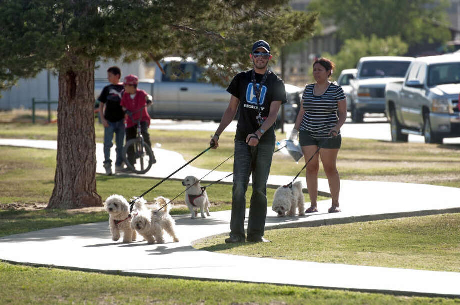 "Midlanders walk pets during a ""Pachanga"" community block party sponsored by the city of Midland and Comunidad in Action on Tuesday at Dunagan Park. James Durbin/Reporter-Telegram Photo: JAMES DURBIN"