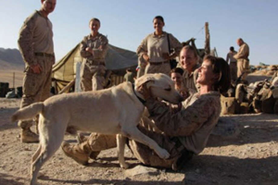 This Aug. 10, 2009, photo shows U.S. Marine Lance Cpl. Brigitte Ratzlaff, of Winter Haven, Fla., playing with Cpl. Clay, a bomb-sniffing dog, while waiting to go out on patrol in the Helmand Province of Afghanistan. Photo: (AP Photo/Julie Jacobson)