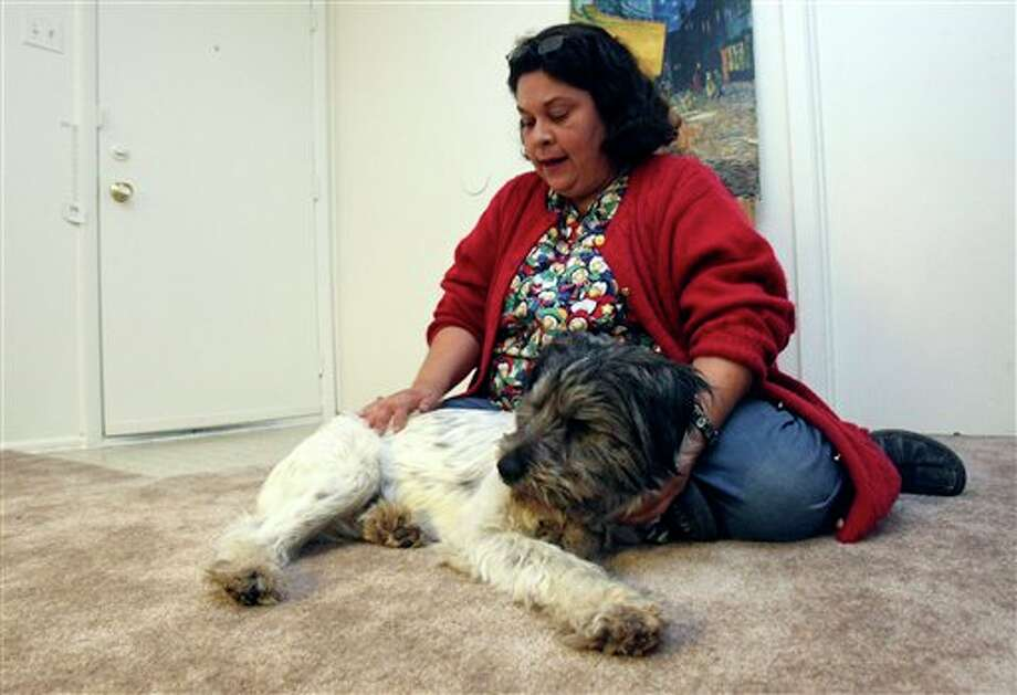 In this Dec. 23, 2011 photo, Belinda Gutierrez sits with her blind dog, Stevie Oedipus Wonder, in San Antonio, after the two were reunited after a volunteer at the city's animal shelter found a Craigslist ad from Gutierrez's daughter looking for the dog. The cairn terrier mix pup disappeared from his home nearly a month ago, was reported dead and had almost overstayed his welcome at the shelter this week when his owner found him. (AP Photo/San Antonio Express-News, Helen L. Montoya) RUMBO DE SAN ANTONIO OUT; NO SALES; MANDATORY CREDIT; TV OUT; MAGS OUT; AP MEMBERS ONLY Photo: Helen L. Montoya / © 2011 San Antonio Express-News