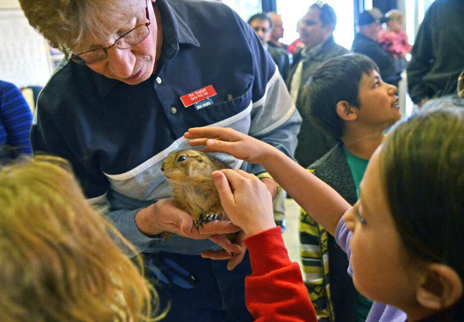 Rick Shephard holds a Black-tailed Prairie Dog named Laverne for kids to look at during Family Science Night on Thursday at the Petroleum Museum. James Durbin/Reporter-Telegram Photo: JAMES DURBIN